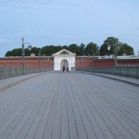 Белая ночь. Иоанновский мост :: Маера Урусова