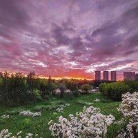 Прощальный весенний закат :: Александр Орлов