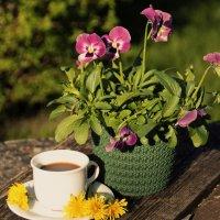 Утренний кофе .. :: Татьяна Ивановна