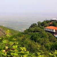 Вид на виноградную Алазанскую долину :: Вячеслав Случившийся