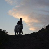 Кенттавр,в горах :: Георгиевич
