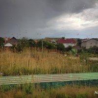 Капли дождя на стекле. :: arkadii