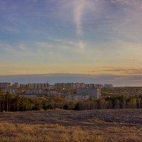 Признаки жизни :: Дмитрий Костоусов