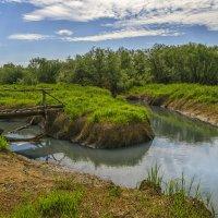 Летом на речке :: Сергей Цветков