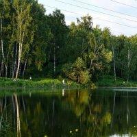 Рагоженский парк (Тула) Панорама :: Андрей