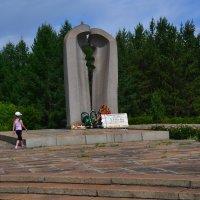 памятник :: petyxov петухов