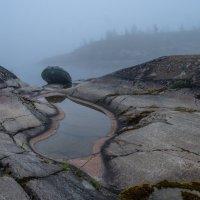 Белые ночи. Белый туман. Ладога. :: Сергей Мартьяхин
