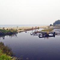 Река Тельная :: Анатолий Цыганок