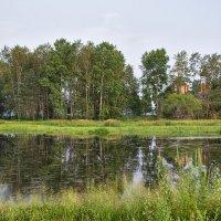 Пасмурным днём на озере :: Людмила Фил
