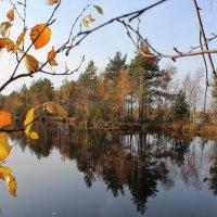 Осень :: Григорий охотник
