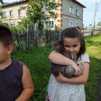 Маша, Мишка и кот :: Валерий Михмель