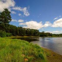 По реке Турье # :: Николай Гирш