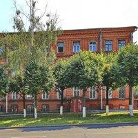 Старый красный дом. :: Михаил Николаев