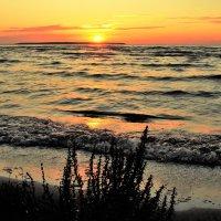 Балтийский закат :: Aida10