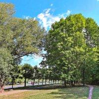 Тропка вдоль парка. :: Михаил Николаев