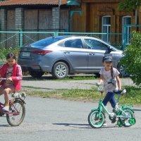 Две подружки ... за окном! :) :: Елена Хайдукова  ( Elena Fly )