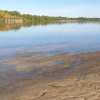 Река Десна осенью :: Александр Скамо