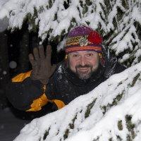 В новогоднем лесу :: Григорий