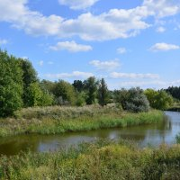 Местная река. :: Виктор