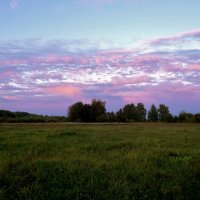розовые облака :: Валентина. .