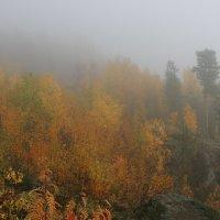 В сплошном тумане :: Ольга
