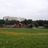 Москва.Парк Садовники. Конец августа. :: Владимир Драгунский