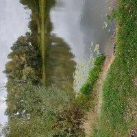 Река :: Александр Скамо