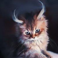 Есть где-то Кошачья планета... :: Лара Leila