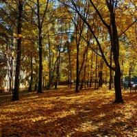 В городе октябрь :: Андрей Лукьянов