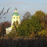 Село Гребнево, Московская область. Никольский храм :: Татьяна