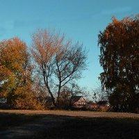 Золотая осень :: Юлия Денискина