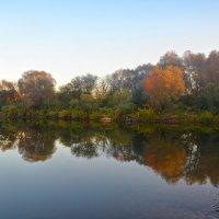 Осень на Протвинском карьере :: Александра Климина