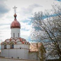 Купол благовещенской церкви Ферапонтов-Белозерский монастырь :: Алексей Шехин