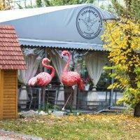 Кафе в  Гагаринском парке :: Валентин Семчишин