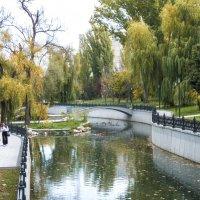 Осень, набережная  Салгира :: Валентин Семчишин