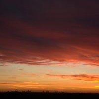Яркие краски Солнца :: Ольга Гукова