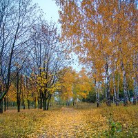 Осень на набережной :: Юрий Муханов