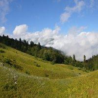 Горы в Гаграх. :: Svet_Lana ZGS