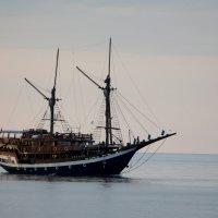 Встречный дайверский корабль :: Геннадий Мельников