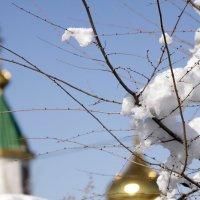 снег :: Бахытжан Акботаев