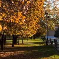 Осенний вальс :: Геннадий Калюжный