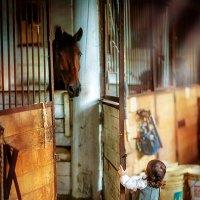 Я люблю свою лошадку.... :: Марина Чурганова