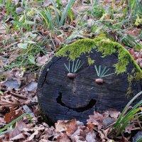 Смайлик из леса! :: Надежда Ивашкина