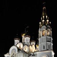 Храм Святого благоверного князя Александра Невского :: Юрий Бичеров