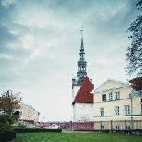 Эстония, Таллин :: Vadim Zhuravlev
