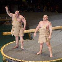цирк :: Slava