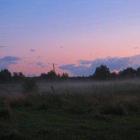 Туман :: Анастасия Козьякова
