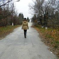 Уходит вдаль, по широкой дороге... :: Анастасия Земкова
