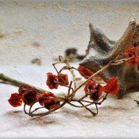 Пело, горело и грело… вчера... :: Ирина Данилова