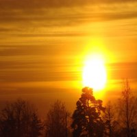 Мороз и солнце; день чудесный! :: Oksana Abdulaeva